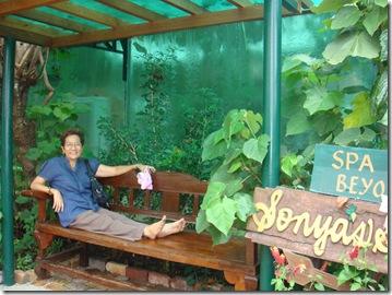 Sonya's Garden (140)