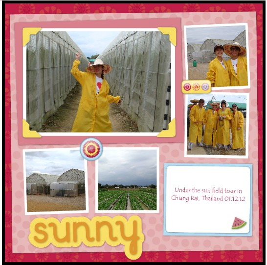 Field Visit at Monsanto Chiang Rai