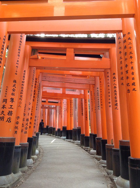 Torii Gates in Fushimi Inari Shirne, Southern Kyoto